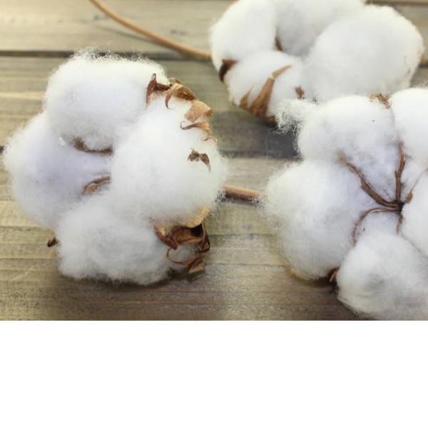 棉花被脏了不知道怎么洗-家纺老司机教您[寝夜思家纺]
